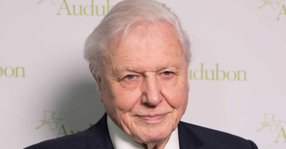 David Attenborough en una alfombra roja