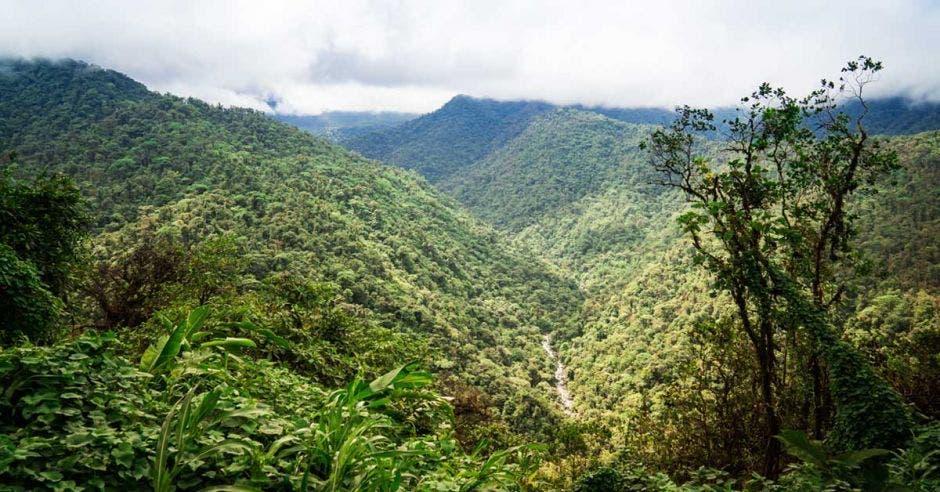 Vista aérea del Parque Nacional Braulio Carrillo