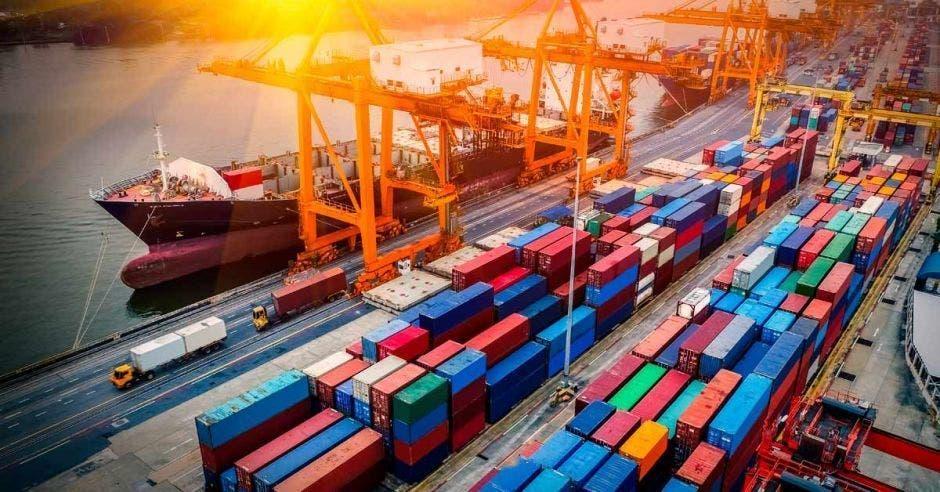 Contenedores de productos de exportación
