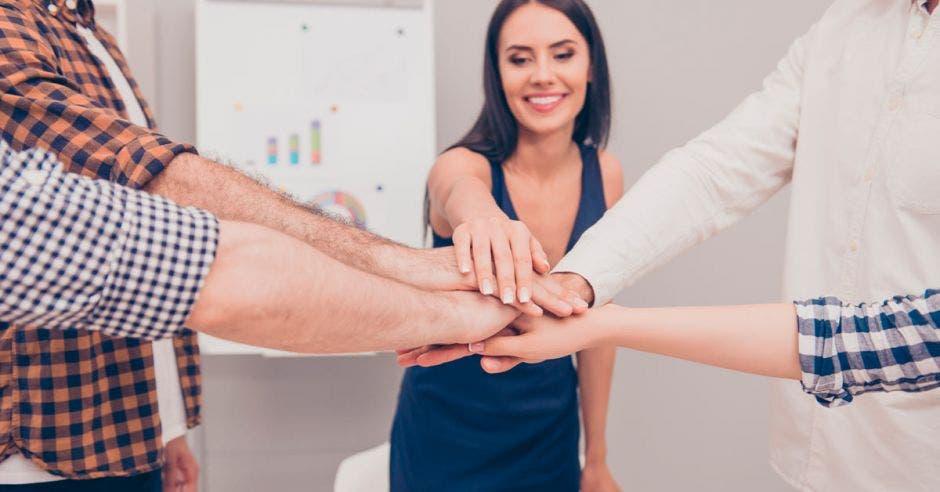 personas uniendo sus manos en el  centro