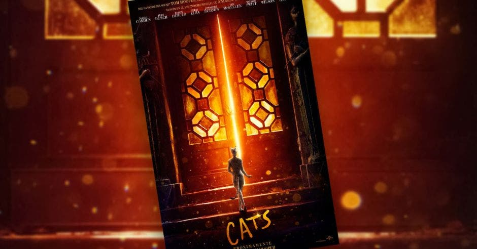 Poster de película cats