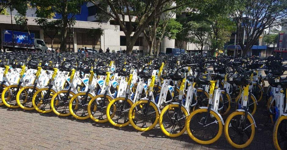 Bicicletas de omni acomodadas en un parqueo capitalino