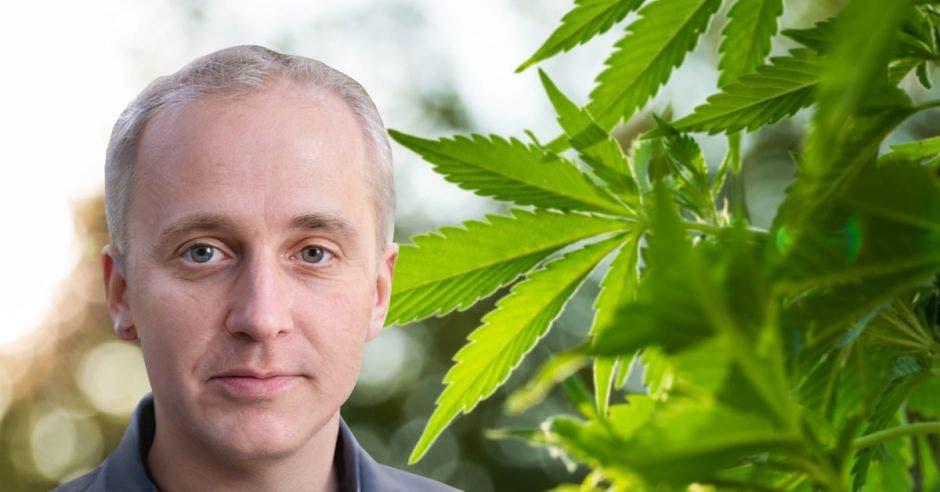 Un hombre caucásico en frente de una planta de marihuana