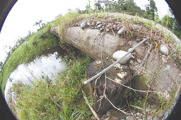Puente rústico hecho con troncos de árboles