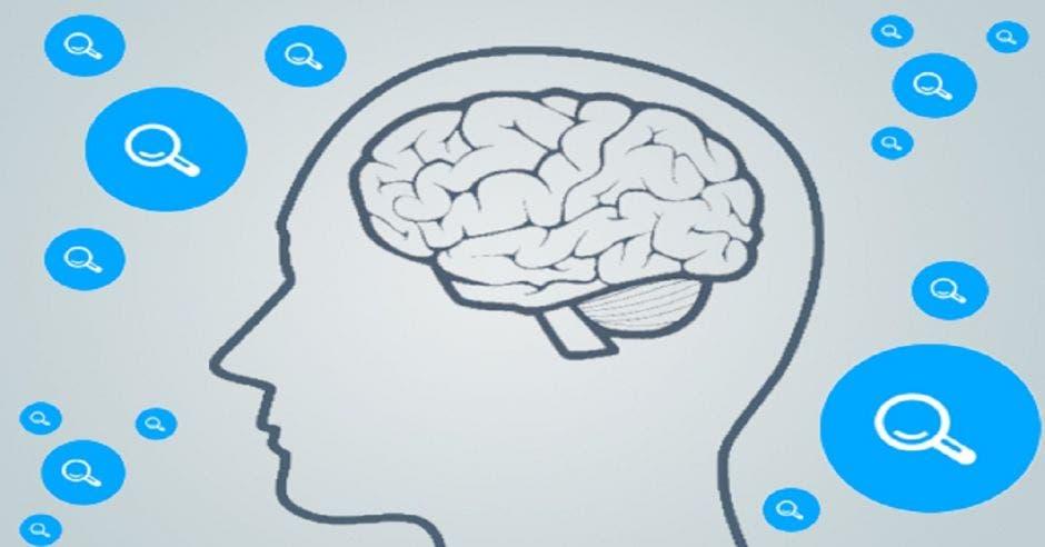 Un dibujo de una silueta de una persona y el cerebro