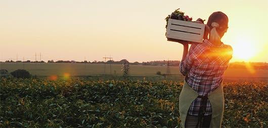 Una agricultora recoge sus productos.
