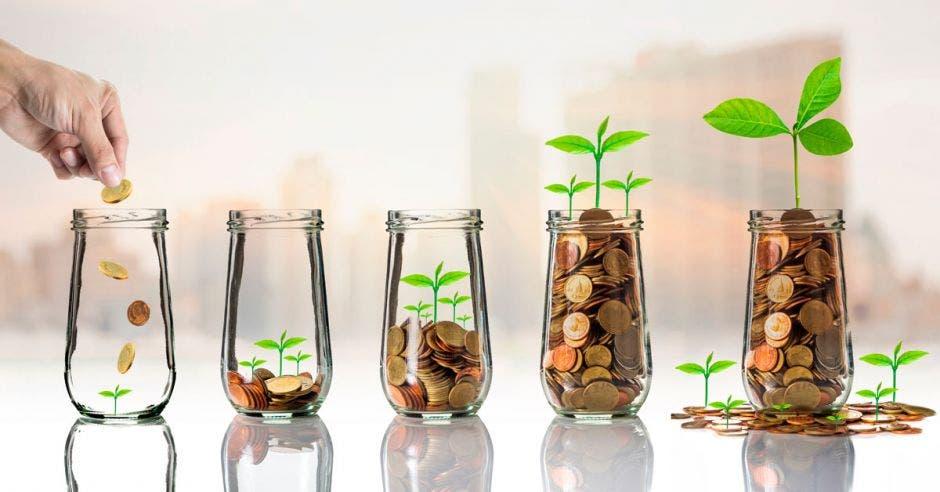 envases de vidrio con monedas que van aumentando y plantas creciendo