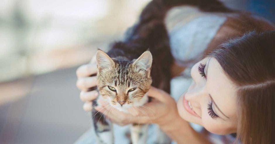 Una mujer acaricia un gato