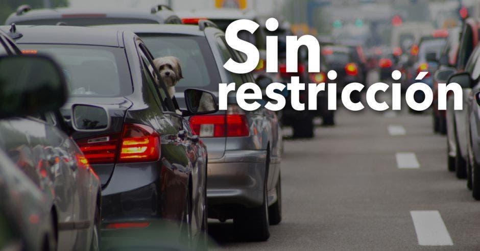 Sin restricción