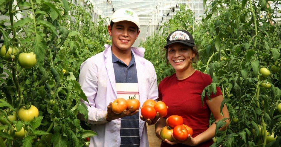 Jóvenes con unos tomates