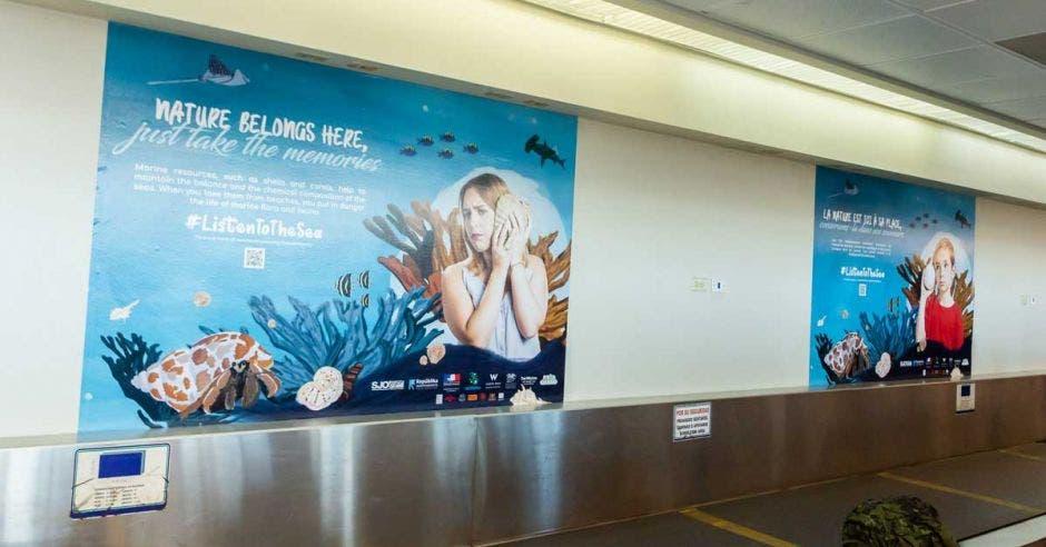 Posters de corales y conchas a lo largo de un pasillo