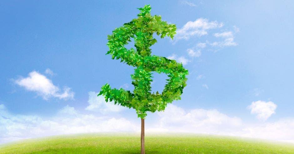 Signo de dólar hecho en hojas verdes