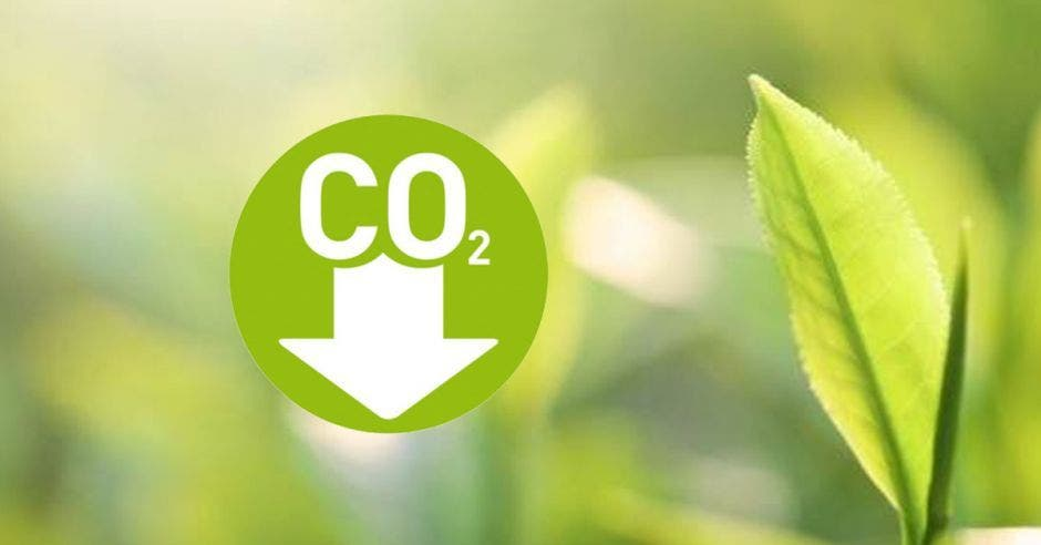 Un signo de dioxido de carbono junto a una hoja verde