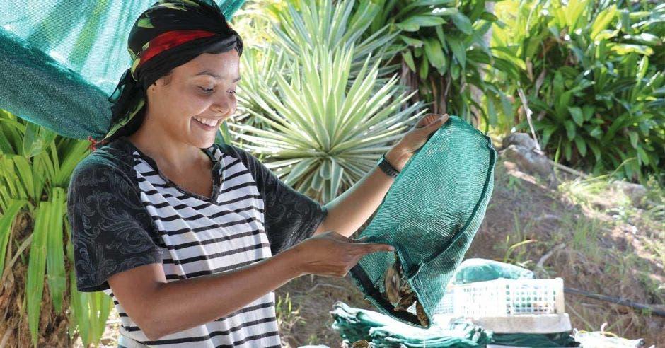 Una mujer del proyecto de granjas de ostras