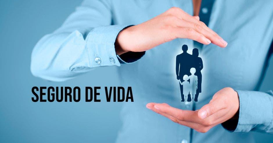 persona sosteniendo a una familia en dibujo entre las manos y la  frase seguro de vida al lado