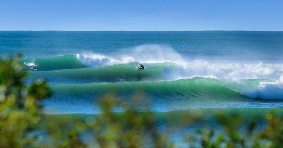 playa surf