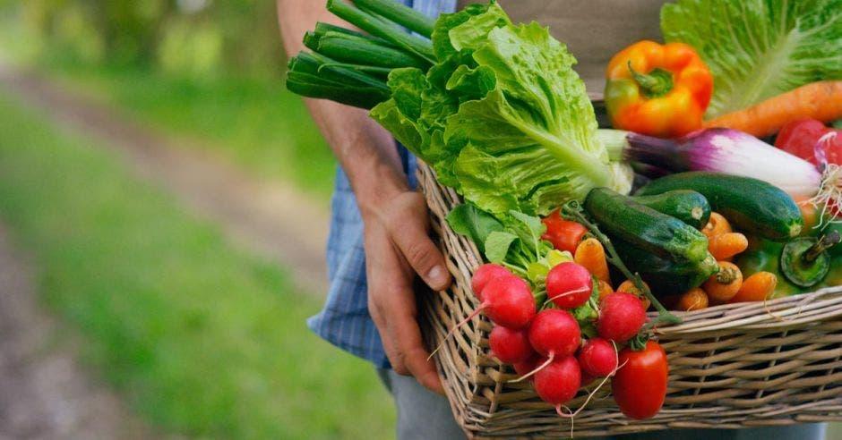 Frutas y verduras en un canasto