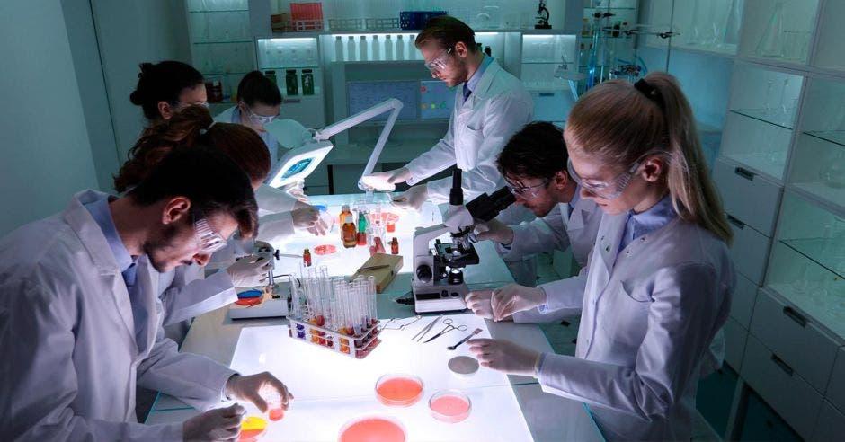Científicos y estudiantes trabajan en estas iniciativas