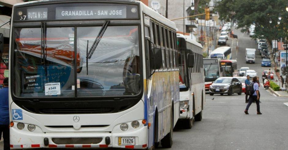 Una fila de buses en la avenida central