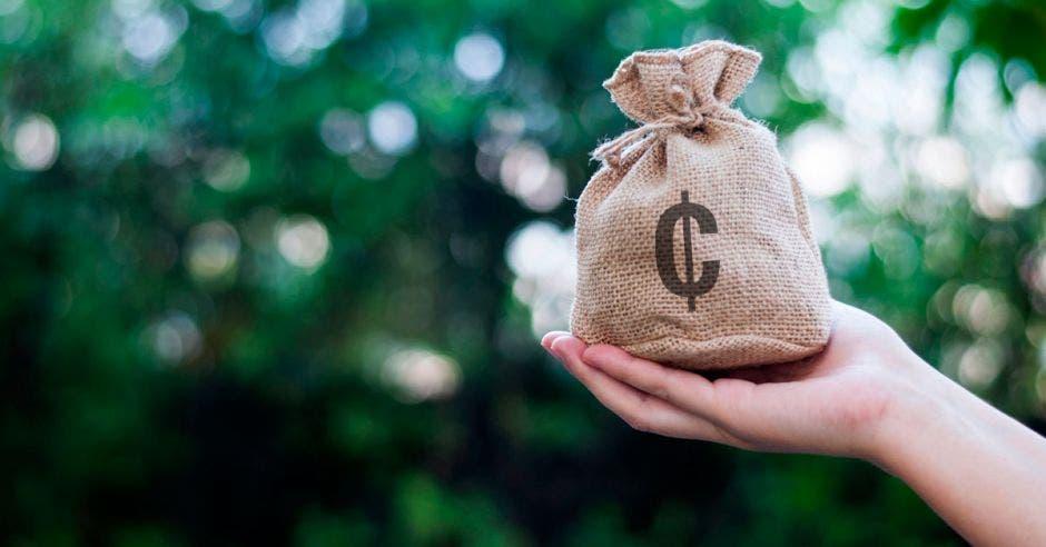 saco  de dinero  en una  mano