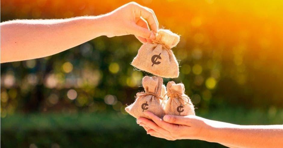 bolsas con dinero