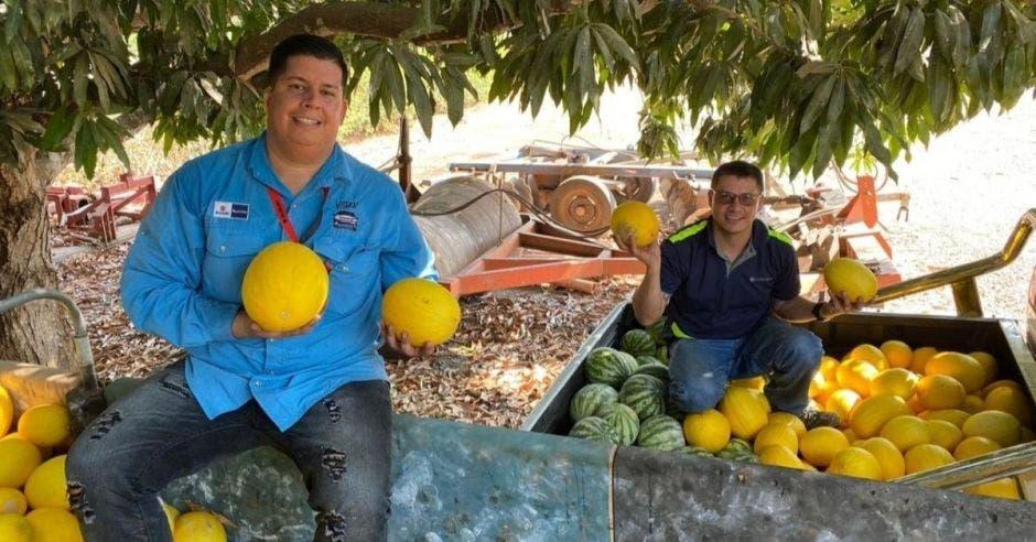personas con frutas en la  mano