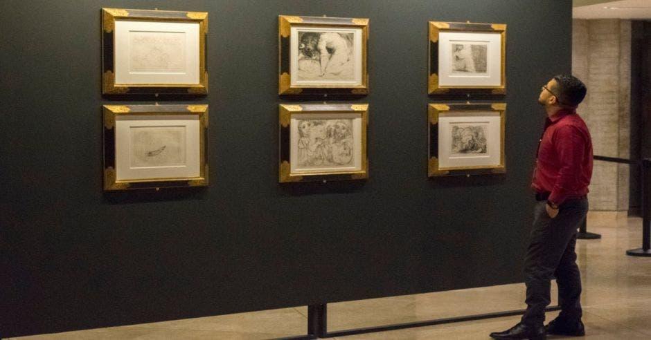 Hombre viendo obras de Picasso