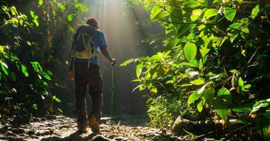 El turismo es uno de los principales motores de la economía y del desarrollo de Costa Rica. Archivo/La República.