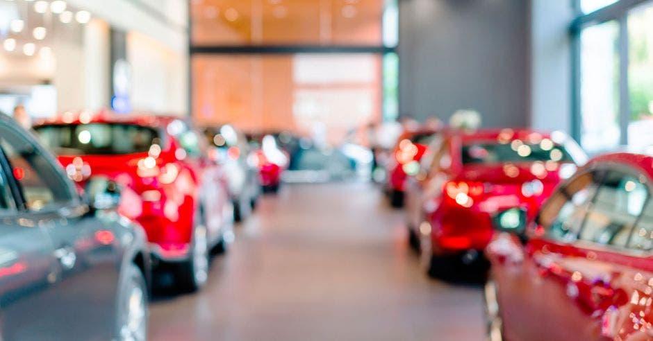 carros rojos en fila