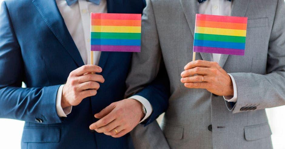 La decisión de los magistrados de validar el matrimonio entre dos personas del mismo sexo hasta mayo del 2020, tenía como objetivo darle el tiempo necesario a los diputados para que legislaran sobre todos los temas legales, pero no lo hicieron. Shutterstock/La República