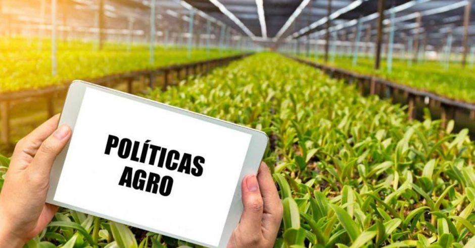 El MAG sigue sin ofrecer acciones claras y a corto plazo. Archivo/La República.