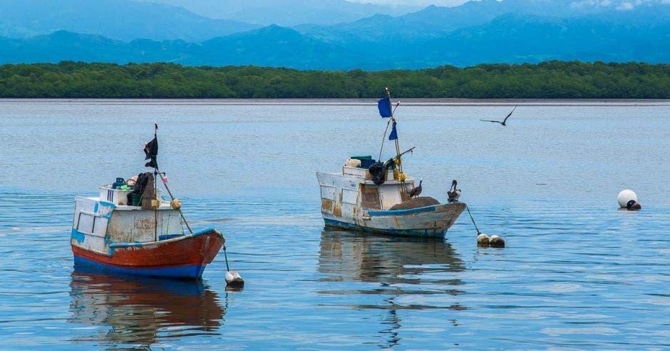 Botes en el mar