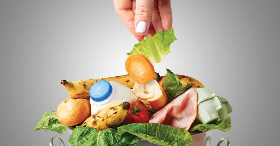 Una persona botando comida en un basurero lleno.