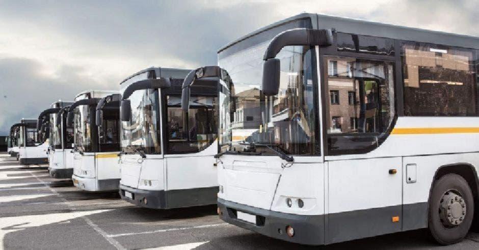 Autobuses parqueados