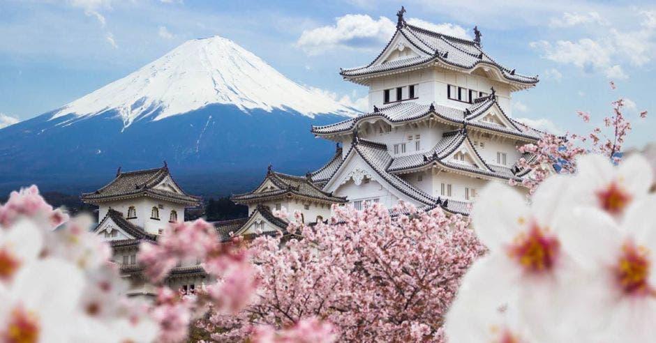 Castillo Himeji y flor de cerezo, con fondo de montaña Fuji, Japón