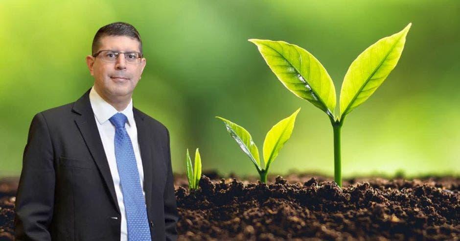 Hombre de traje frente a planta creciendo