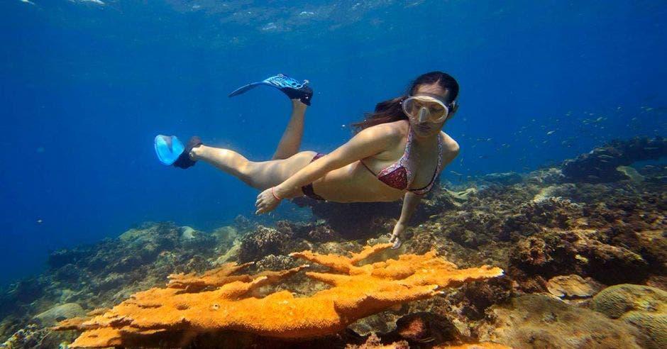 Una mujer hace esnórqueling entre los corales