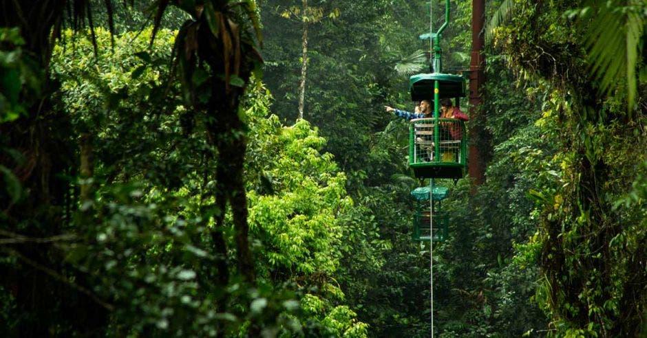 Un teleférico recorre las copas de los árboles