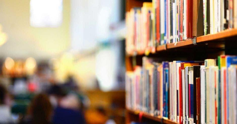 Libros en estantes