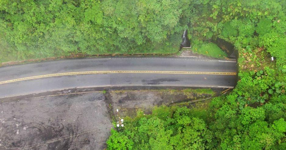 Una carretera rodeada de árboles verdes y frondosos