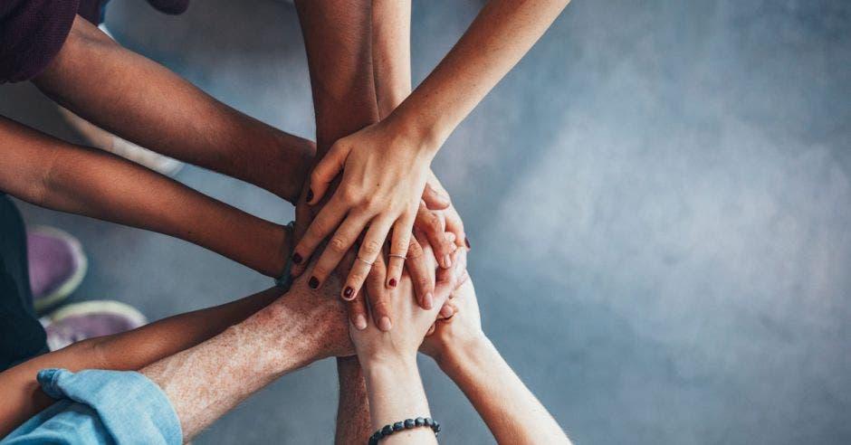 Vemos un montón de manos unidas.