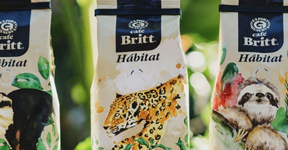 Paquetes de Britt