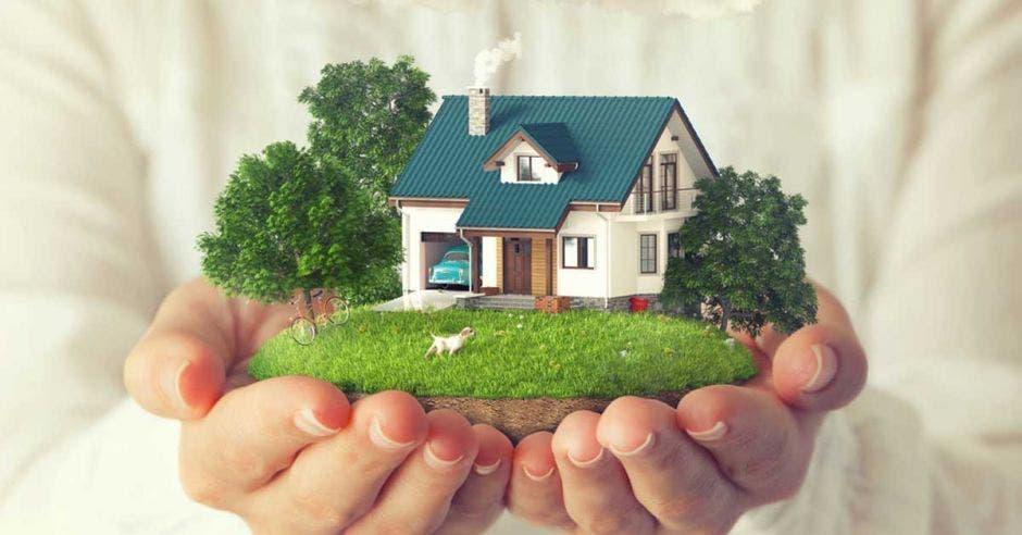 Casa con árboles es sostenida en las manos de una persona