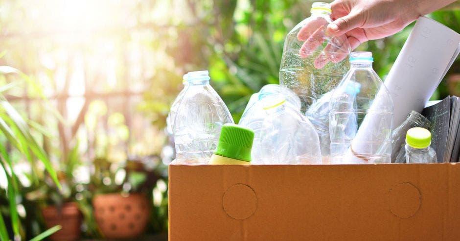 Vemos botellas de plástico vacías en una caja