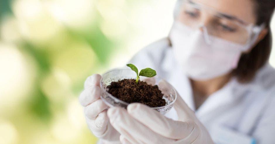 Una mujer con anteojos sostiene una pequeña planta en su mano
