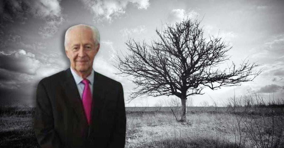 Hombre de avanzada edad frente a árbol marchito