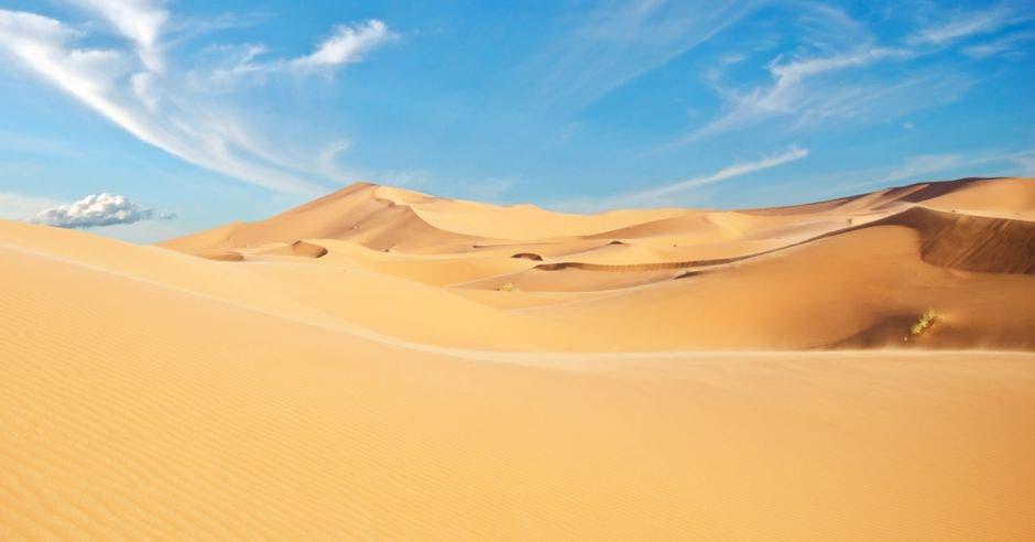 Vemos un desierto