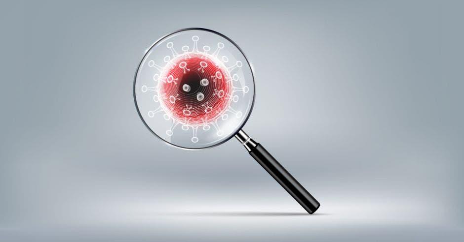 Coronavirus y una lupa