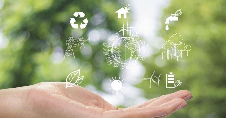 Vemos una mano sosteniendo componentes ambientales