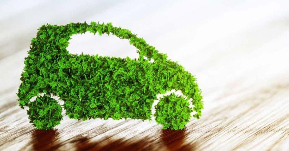 Auto hecho de hojas de árbol